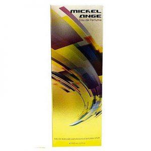 ادکلن مردانه دنا مدل MICHEL ANGE حجم 100 میلی لیتر